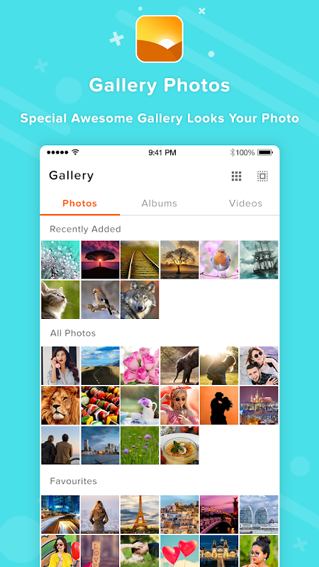 Gallery -Photos & Videos