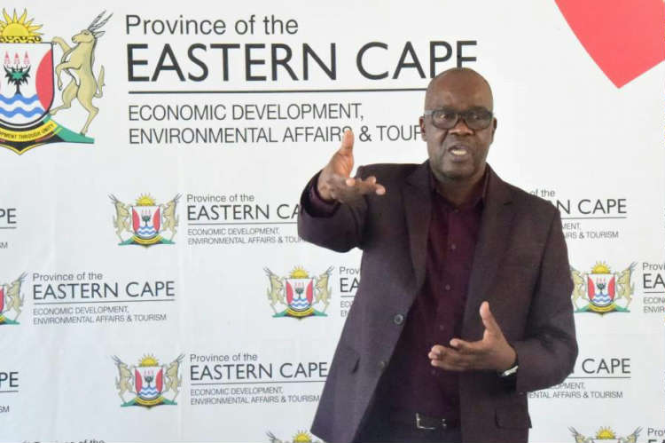 Eastern Cape launches R40m informal business support programme