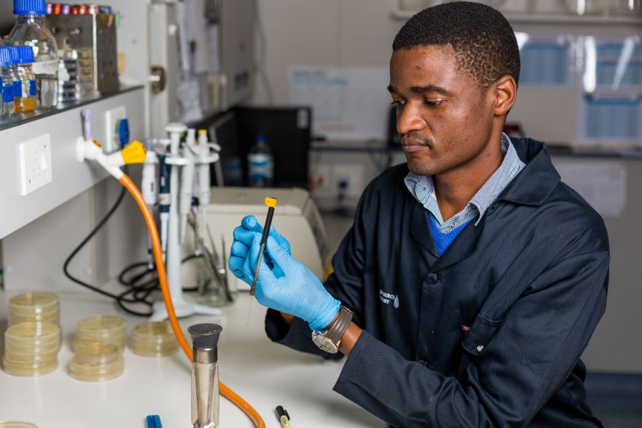 Alternative antimicrobial compounds could come from wastewater
