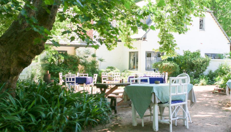 Constantia is the Ultimate Family Holiday Destination