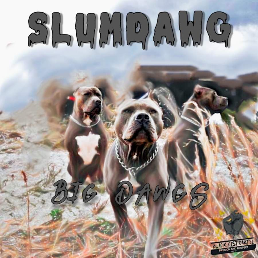 SLUMDAWG releases inspiring new HIP HOP Single 'BIG DAWGS' - A song about fulfilling your dreams and rising to the top