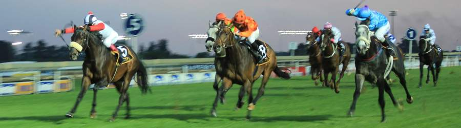 It is a racing go for traditional equine sport in KwaZulu-Natal