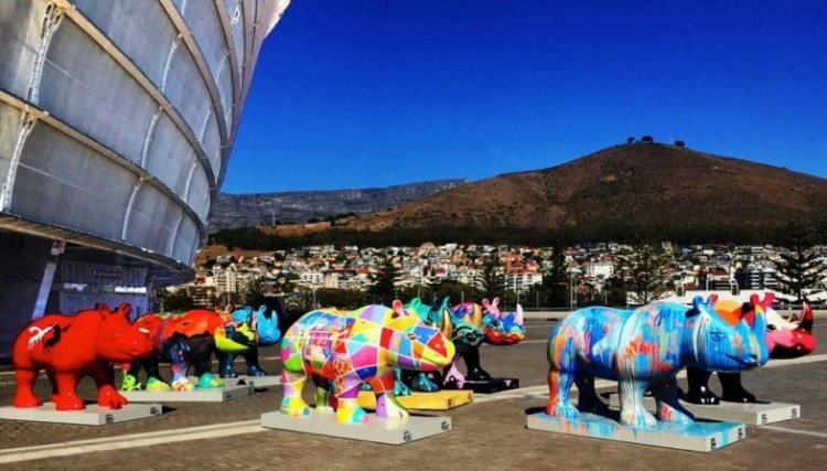 The Rhinos are Coming!!! Rhinos Paint The Town Red at V&A Waterfront and Cape Town International Airport!
