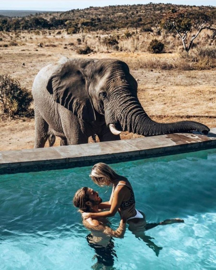 Celebrate your love with a Valentine's Safari at Mhondoro in the Waterberg