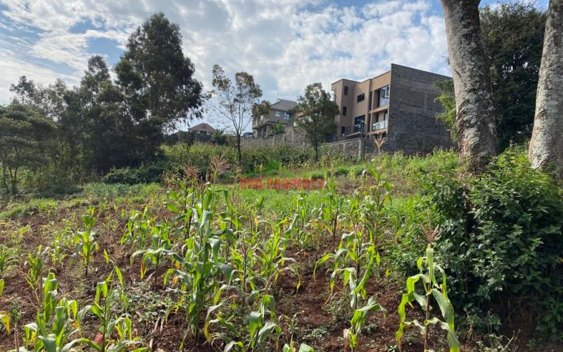 Residential Plot For Sale in Kinoo Muthiga.