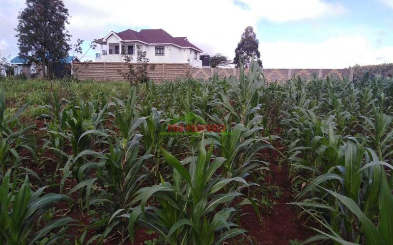 Residential Plot For Sale In Kikuyu Kamangu Area