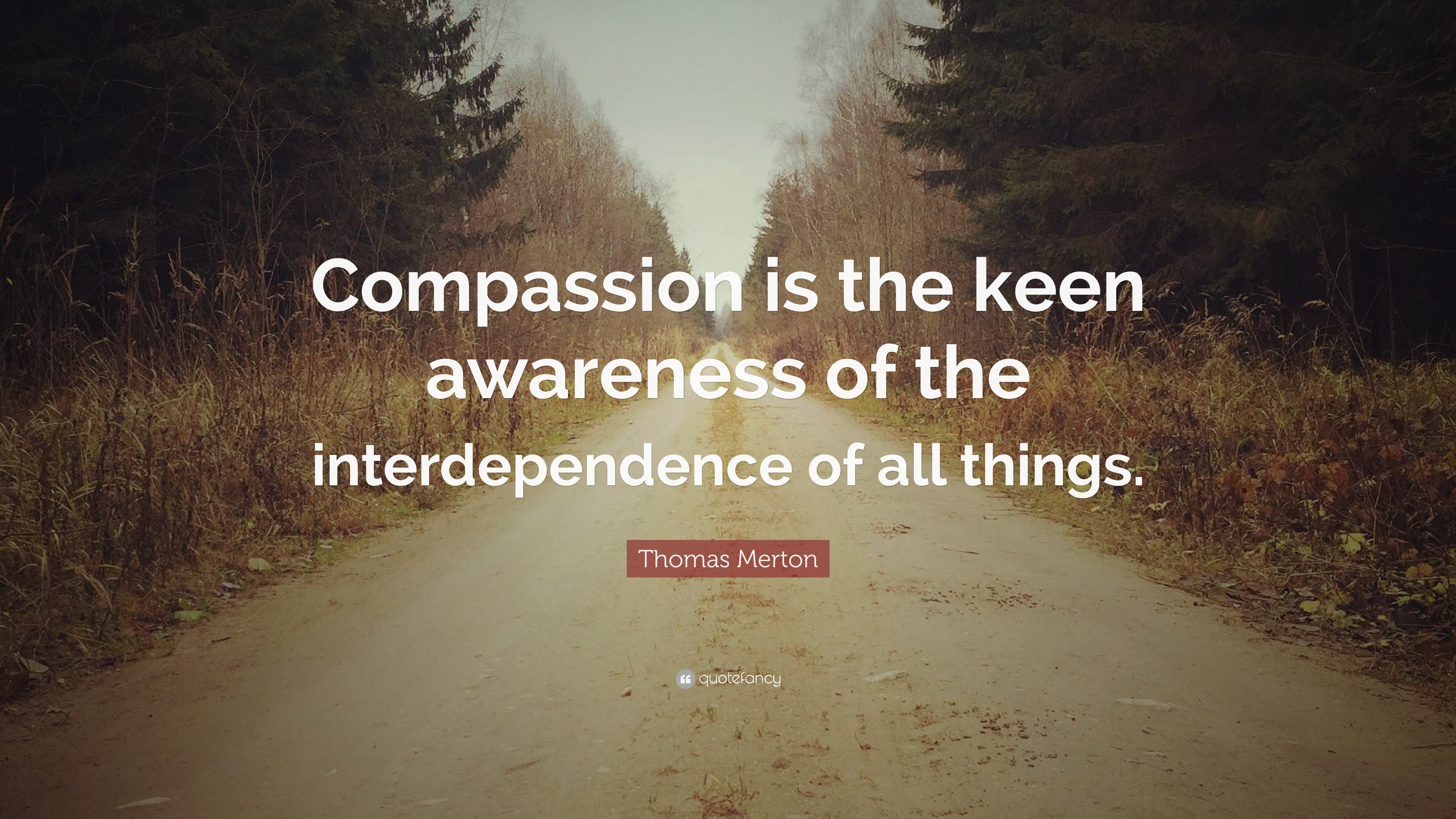 Quotes About Compassion 5