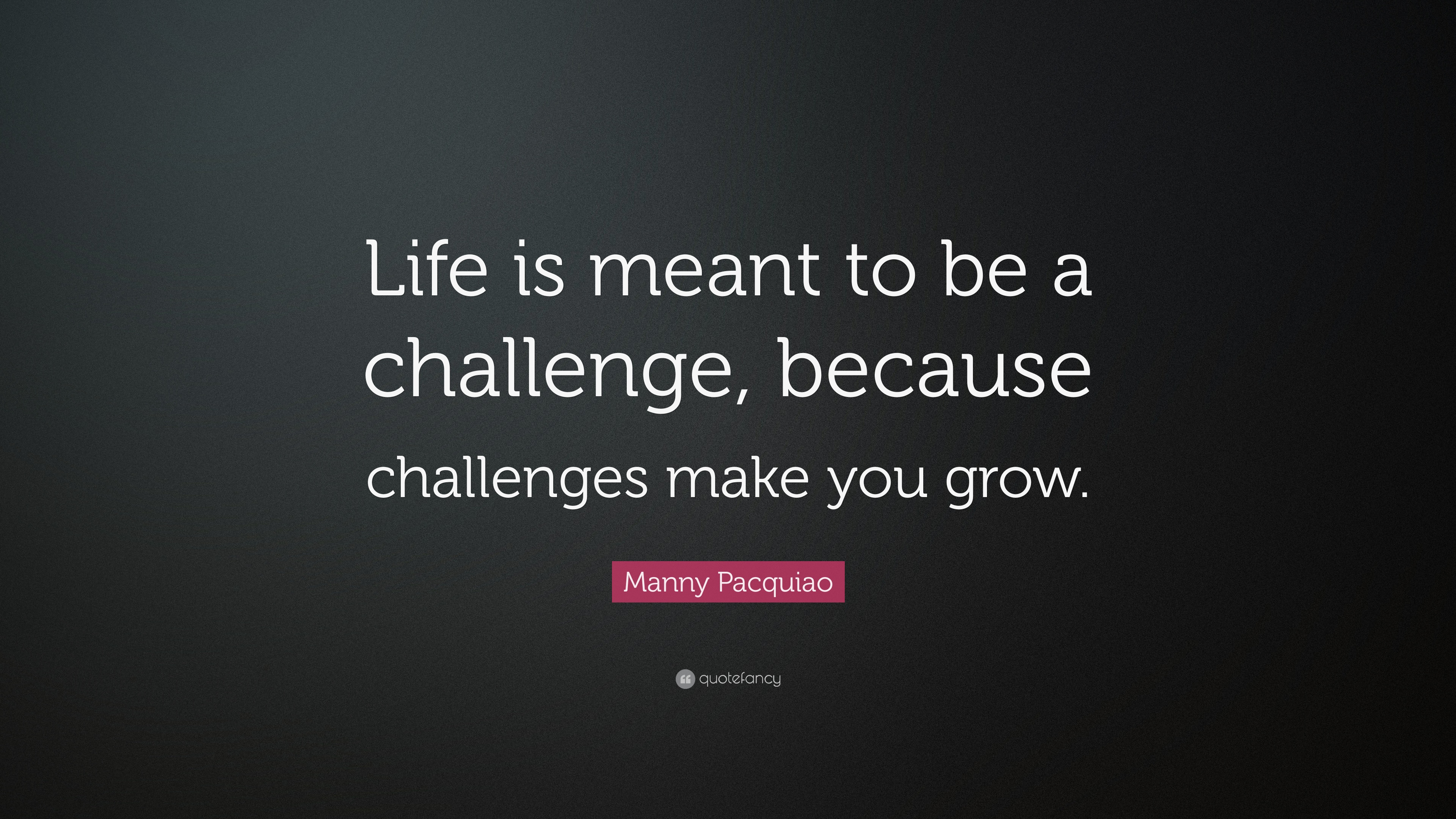 Challenges In Life Quotes 3