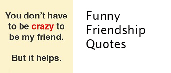 Short Funny Friendship Quotes 6