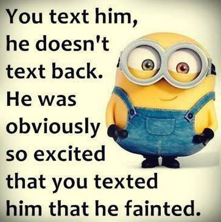 Minions Love Quotes 2