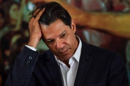 Haddad aponta erro do PT