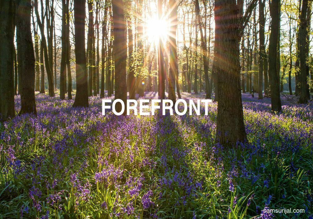 Arti Forefront