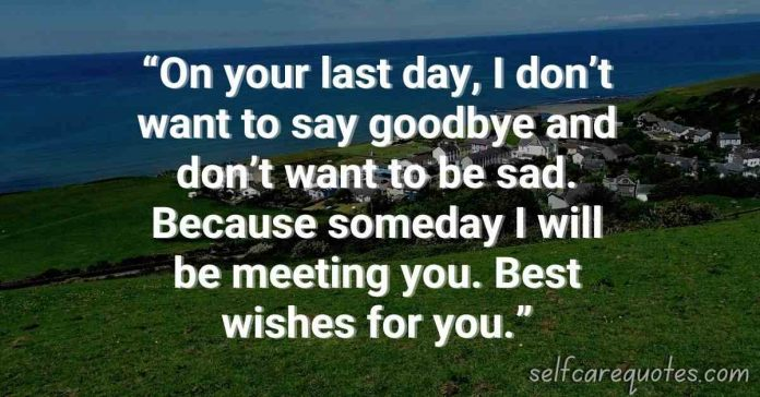 Top Popular Farewell Quotes for Seniors