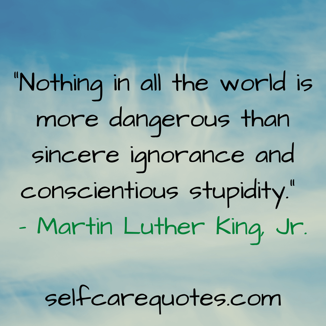 """""""Nothing in all the world is more dangerous than sincere ignorance and conscientious stupidity."""" – Martin Luther King, Jr."""