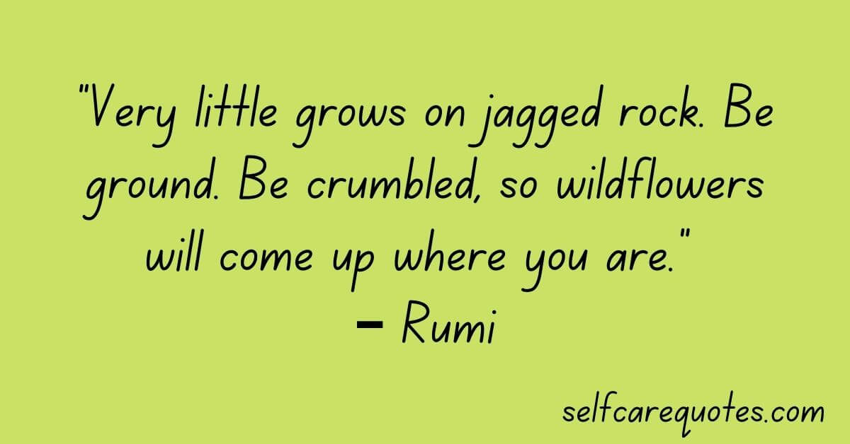 """""""Very little grows on jagged rock. Be ground. Be crumbled, so wildflowers will come up where you are."""" – Rumi"""