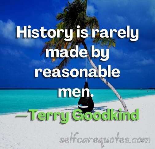 History is rarely made by reasonable men. —Terry Goodkind