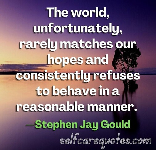 The world, unfortunately, rarely matches our hopes and consistently refuses to behave in a reasonable manner. —Stephen Jay Gould