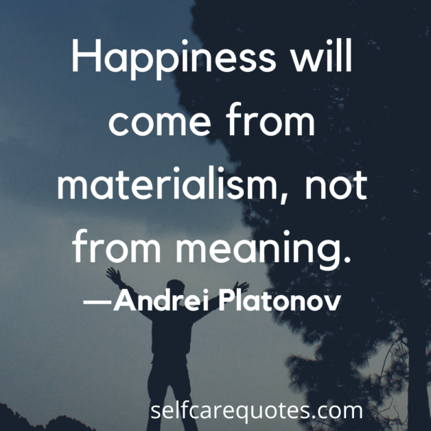 Happiness will come from materialism, not from meaning. -Andrei Platonov