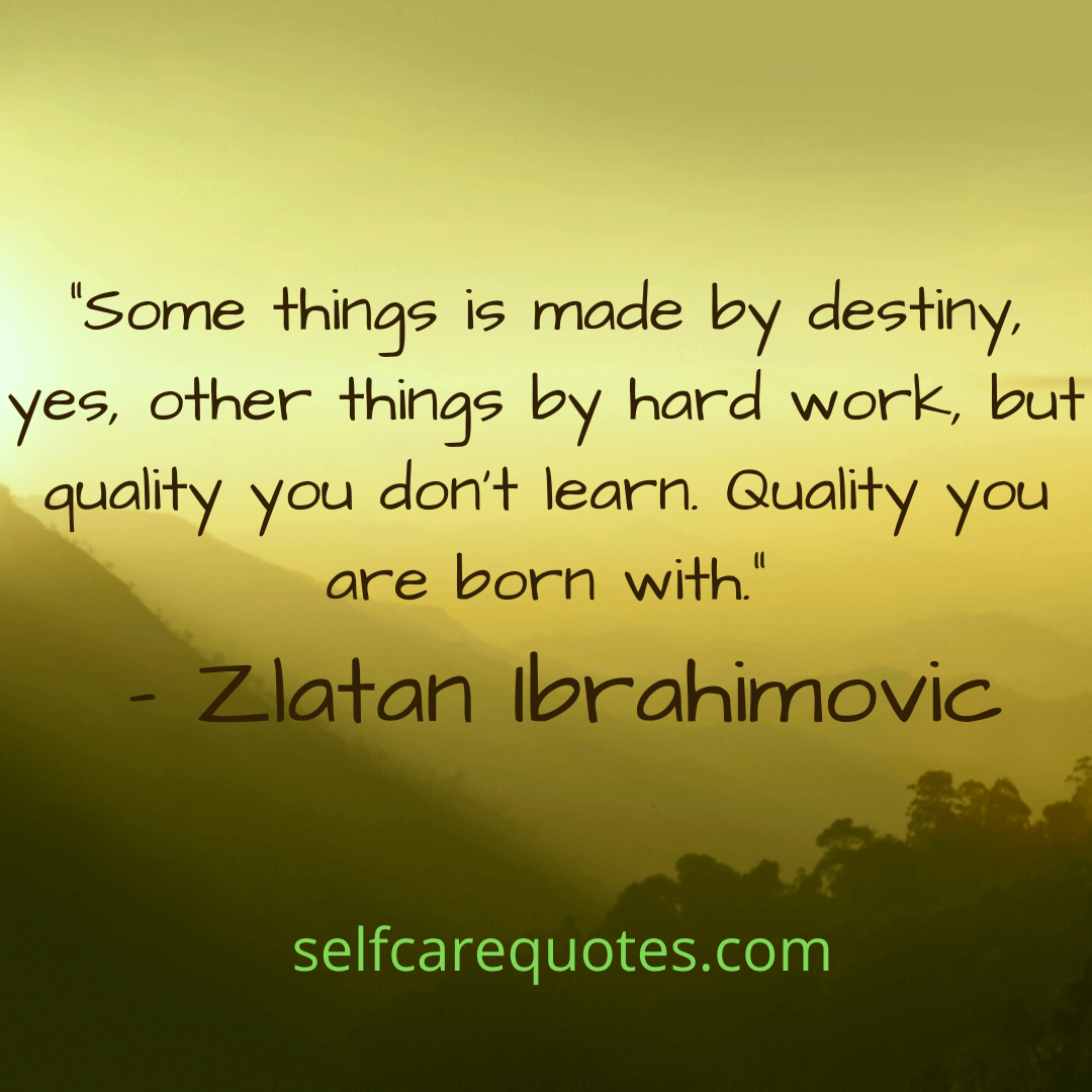 Some things is made by destiny yes, other things by hard work, but quality you dont learn. Quality you are born with.-destiny quotes