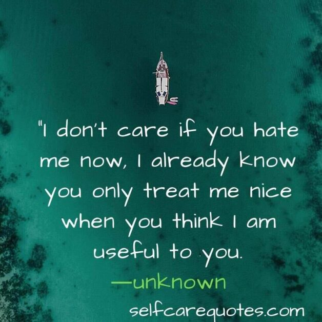 I do not care if you hate me now, I already know you only treat me nice when you think I am useful to you.-unknown