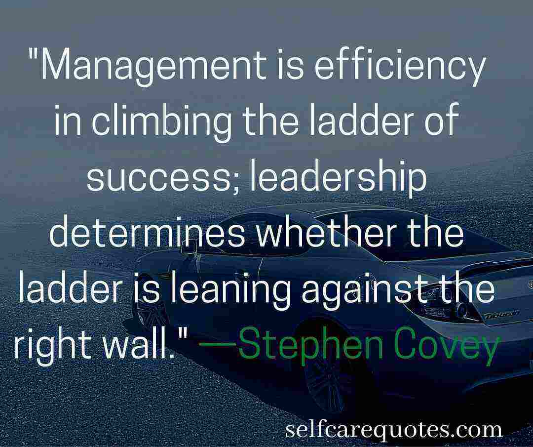 Management is efficiency in climbing the ladder of success; leadership determines whether the ladder is leaning against the right wall. —Stephen Covey