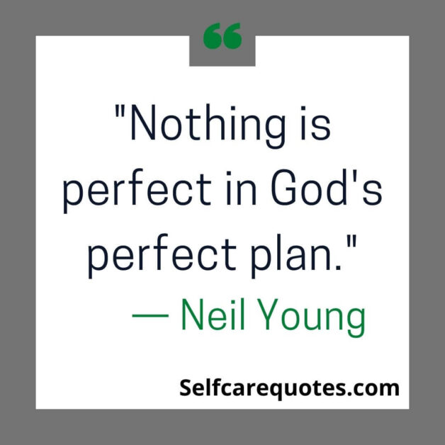 Nothing is perfect in God's perfect plan.— Neil Young