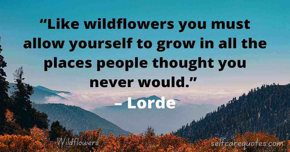 Wildflower Quotes