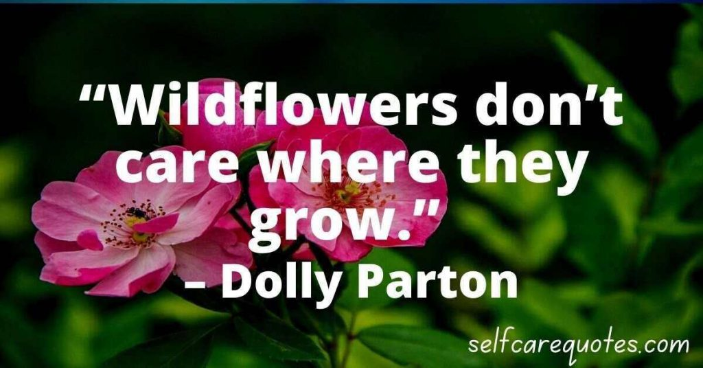 Wildflowers dont care where they grow. – Dolly Parton