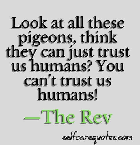 Top 50 Pigeon Quotes