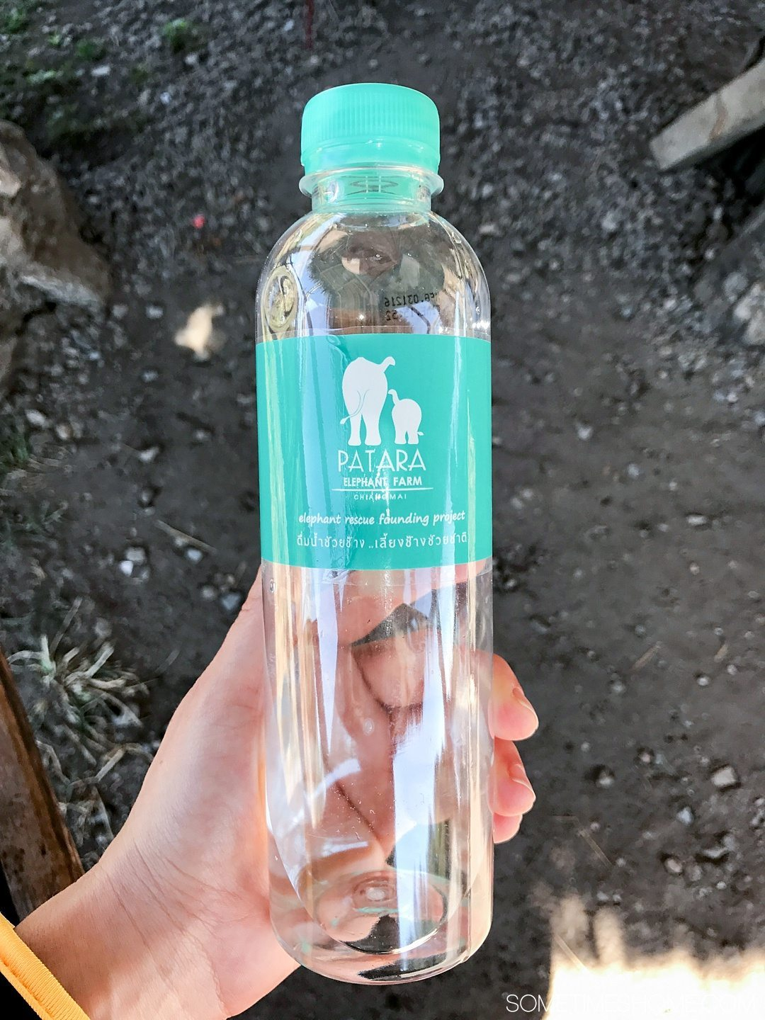 Vital FAQs Answered About Patara Elephant Farm in Chiang Mai. Information by Sometimes Home travel blog. A photo of their custom branded water bottles.