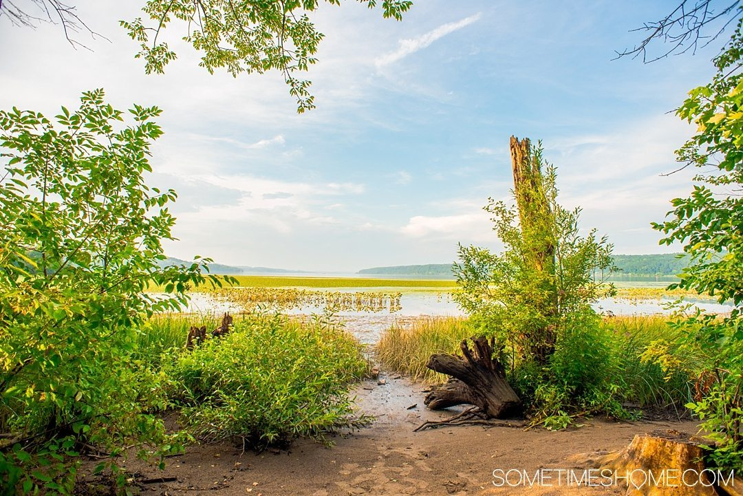 Your Complete Guide to Saugerties, New York on Sometimes Home travel blog. Photo of the view on the walk to the Saugerties Lighthouse.