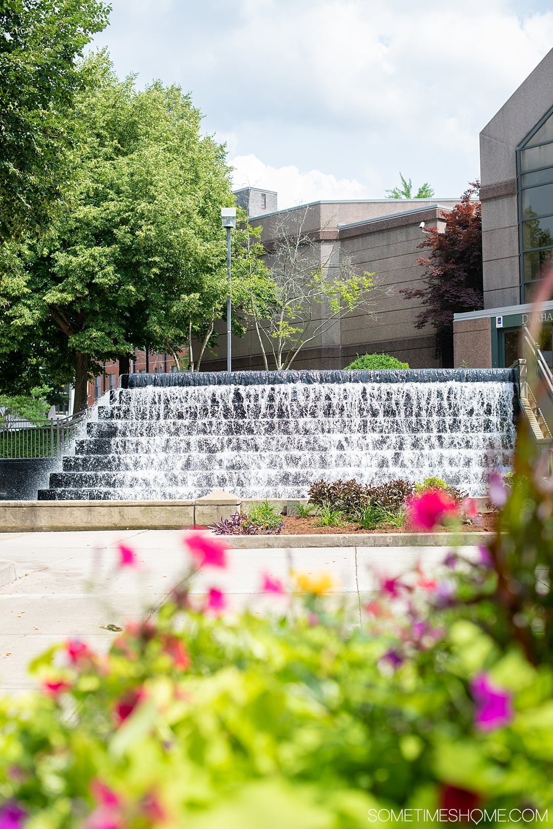 The 12 Best Photography Spots in Durham, North Carolina include art, greenery, a very special part of Duke campus, shopping areas downtown and more. Click through to read the specifics on Sometimes Home! #DurhamNC #NorthCarolina #DurhamNorthCarolina #Duke #VisitNC #photographyspots #photography