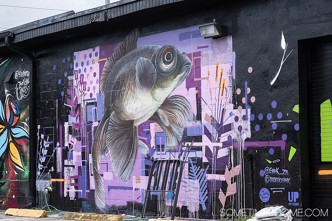 Beautiful fish mural in Wynwood. Sometimes Home travel blog spills all the details of this cool neighborhood.