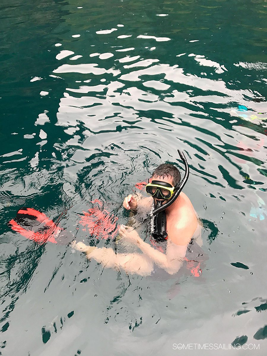 Man in the water with a snorkel mask and fins on.