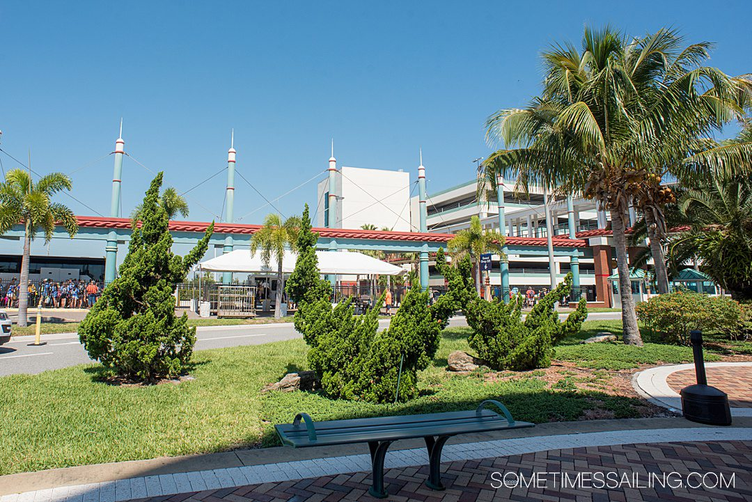 Photo of plants in front of the parking in the distance for Port Canaveral U.S. Cruise Port terminal.