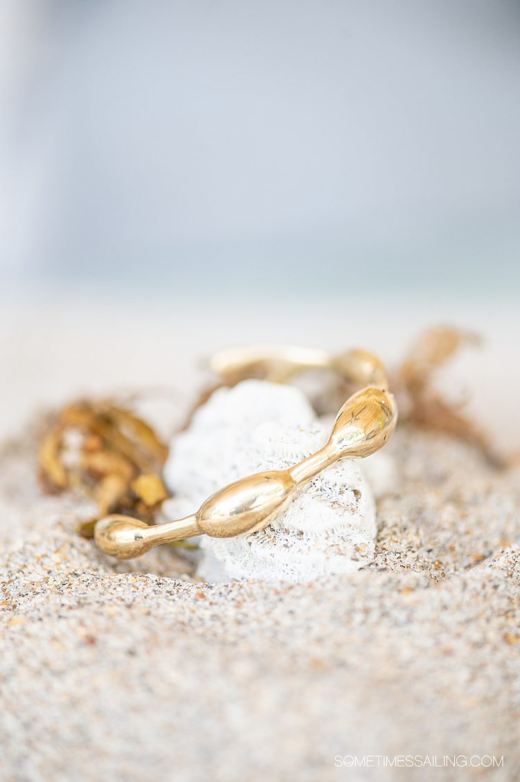Brass seaweed inspired bracelet by Wildwood Oyster Co. on a piece of coral and sand.