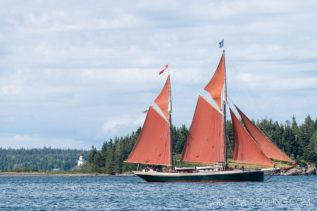 The Angelique ship with red sails, sailing Maine's coast, part of Maine Windjammer cruises.