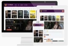 Photo of ToroPlay v3.0, The Best WordPress Theme for Movies and Series Online