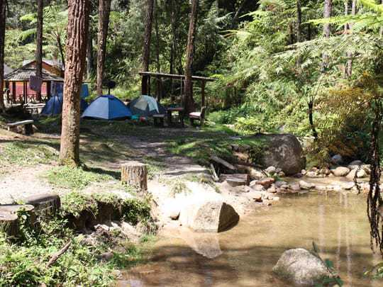 Camp site by the river Cameron Highlands