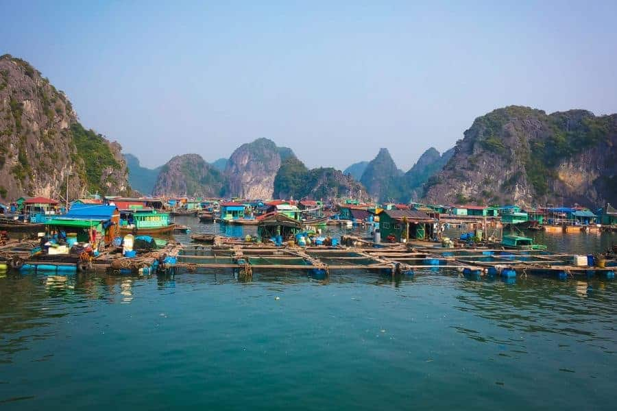 Colourful houses make up the floating village at Halong Bay, Vietnam