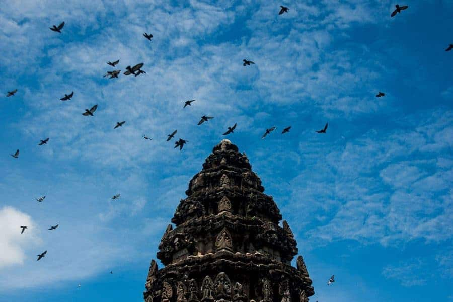 Birds fly around a tower of a temple in Phimai