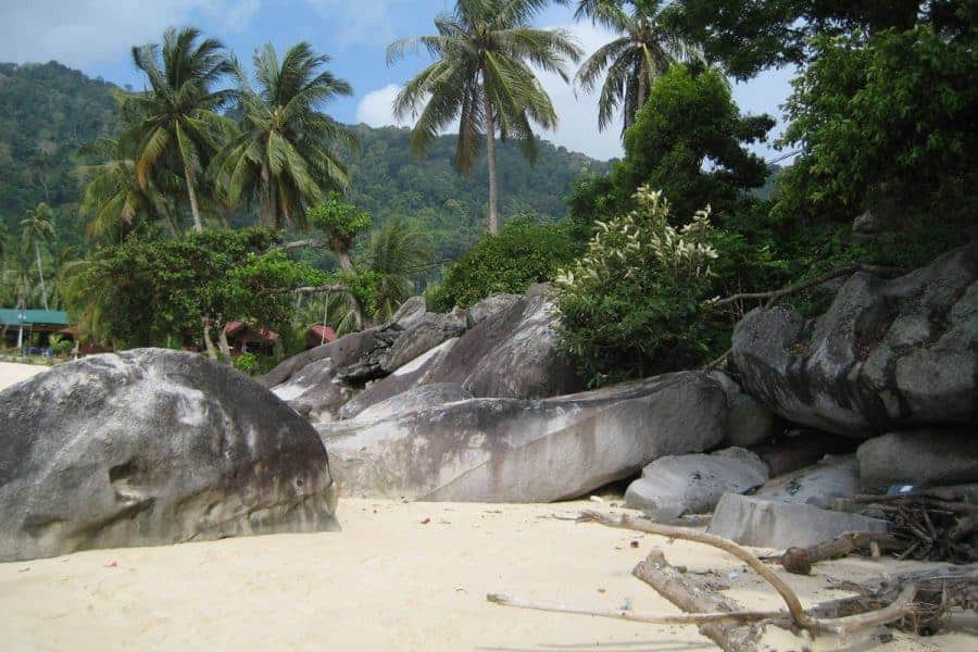 A sandy beach with palm trees in the background on Pulau Tioman