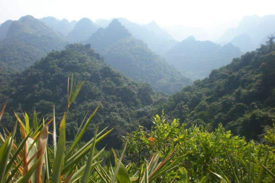 Luscious Green Mountains in the Mist atCat Ba National Park