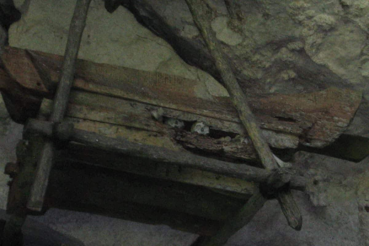 Coffins-in-a-cave-Sulawesi-Indonesia