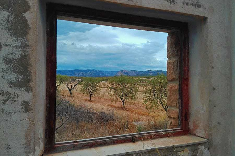 Olive-Grove-Seen-Through-The-Window-Of-An-Abandoned-Train-Station-Building-in-Valderrobres,-Aragon,-Spain