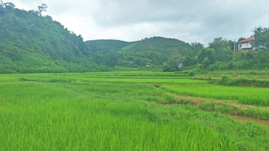 Rice fields and countryside around Kalaw, Myanmar.