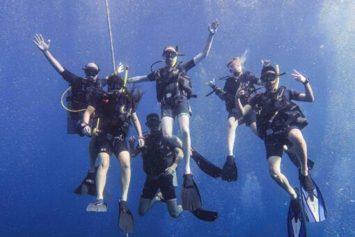 Diving with Roctopus!