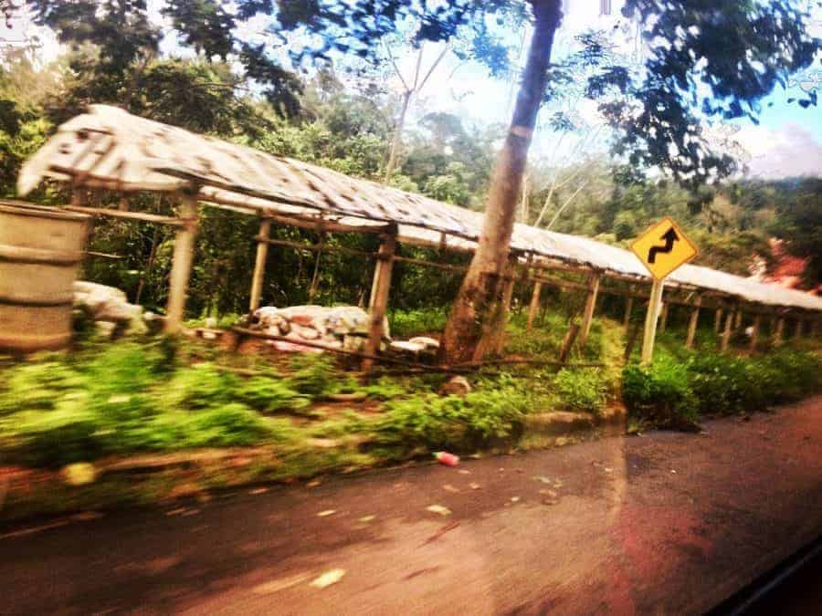 A blurry photo taken on Route 1095 on the bus from Chiang Mai to Pai