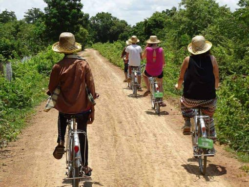 Butterfly Tours Kampot Cambodia
