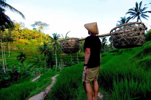 Traveller poses overlooking the rice fields, Bali.